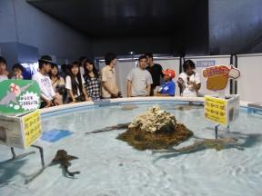 2日目は・・・水族館へ行きました!