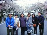 千鳥が淵へ行ってきました。桜の名所!
