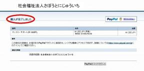 Paypal_manual_4