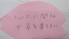 sakura_kaku